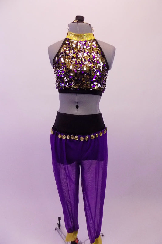 Costume has purple harem pants with gold coin trim hip accent. The halter style fully sequined half-top has double gold and black angled back straps. Comes with a gold hair accessory. Front
