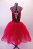 Crimson red romantic tutu has long tulle skirt with a crushed velvet bodice. The front center of the torso is red sequin with a large red jewel brooch accent. The back has a nude panel with faux corset ties. Comes with a floral hair accessory. Back