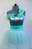 Mint metallic bodysuit with marabou & crystal broach accent with crystals. Has matching velvet waistband with crystals & a mint romantic tutu. With hair piece. Front zoom