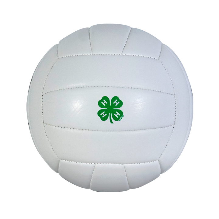 4-H Volleyball