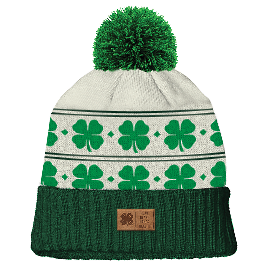 Patterned Green Pom Beanie