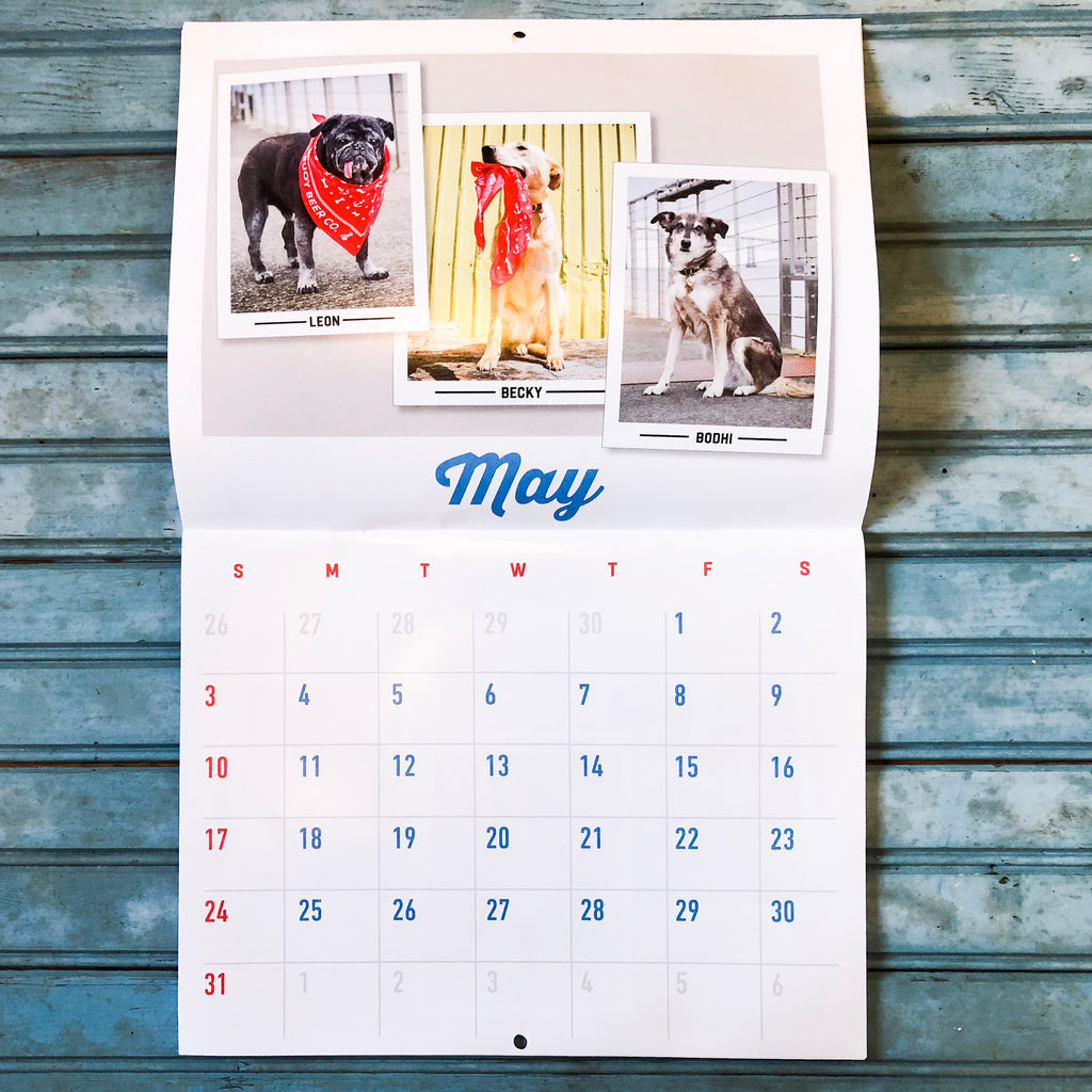Dogs of Buoy Calendar