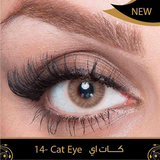Dahab Lenses Cat Eye - Daily -1.00