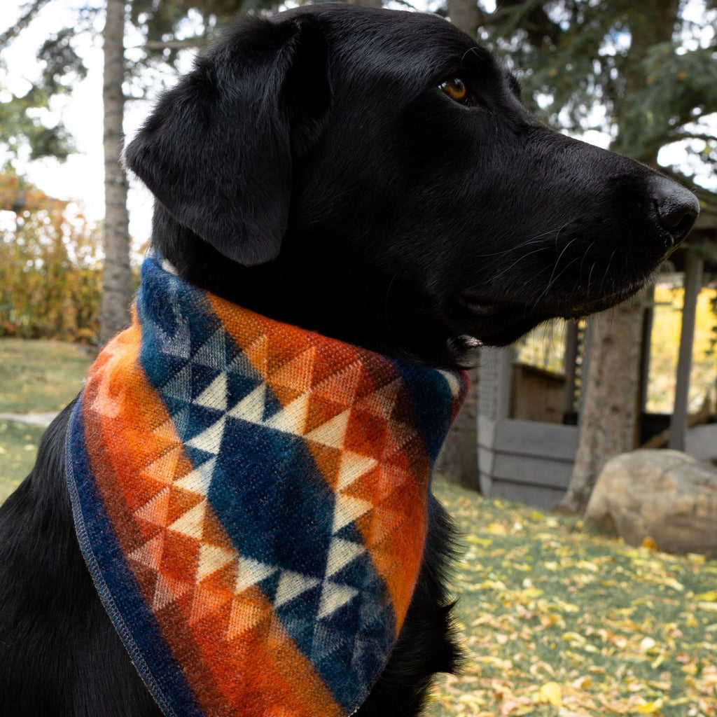 HeartPrint Dog Bandanas - SUNRISE