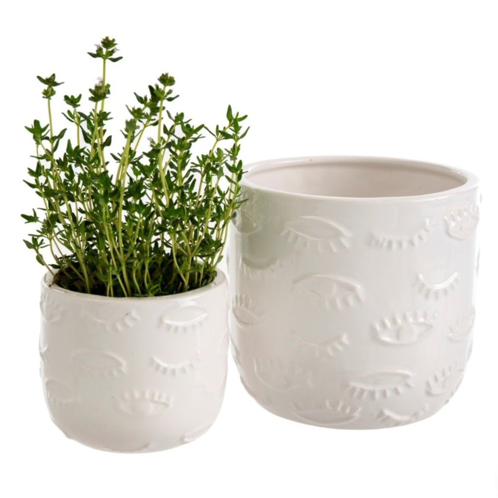 Winky Plant Pots (2 sizes)