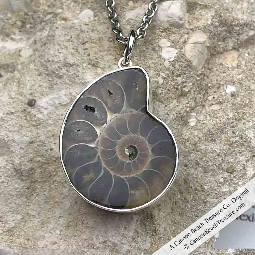 Ammonite Fossil Necklace in Sterling Silver by Charles Albert