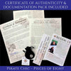 Spanish Pirate Treasure Reale Coin Certificate of Authenticity and Documentation Package Cannon Beach Treasure Compan