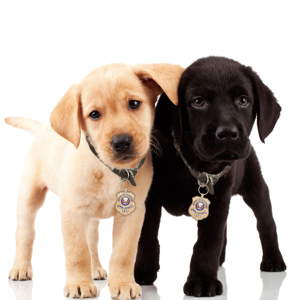 Lab Puppies with Gold-Plated K-9 Honor Badge