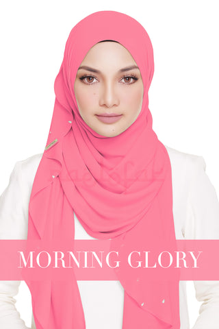 LADY WARDA - MORNING GLORY