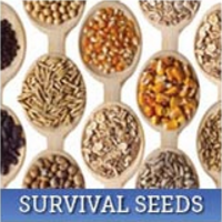 Survival Seed Kits