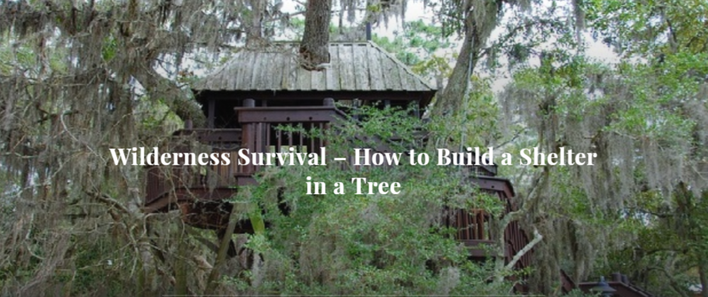 Wilderness Survival – How to Build a Shelter in a Tree