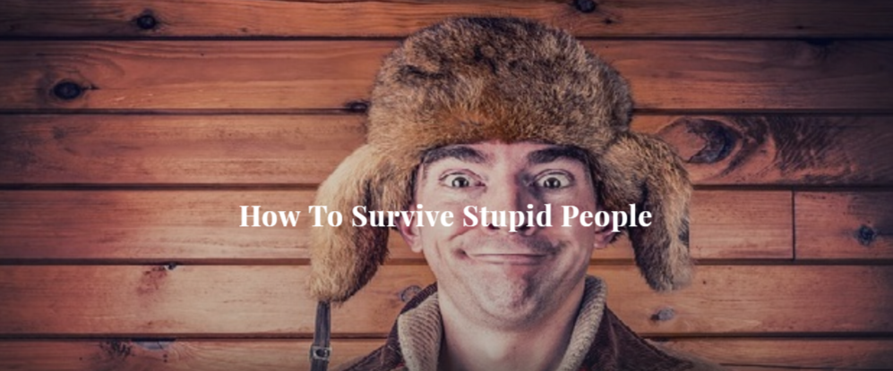 How To Survive Stupid People