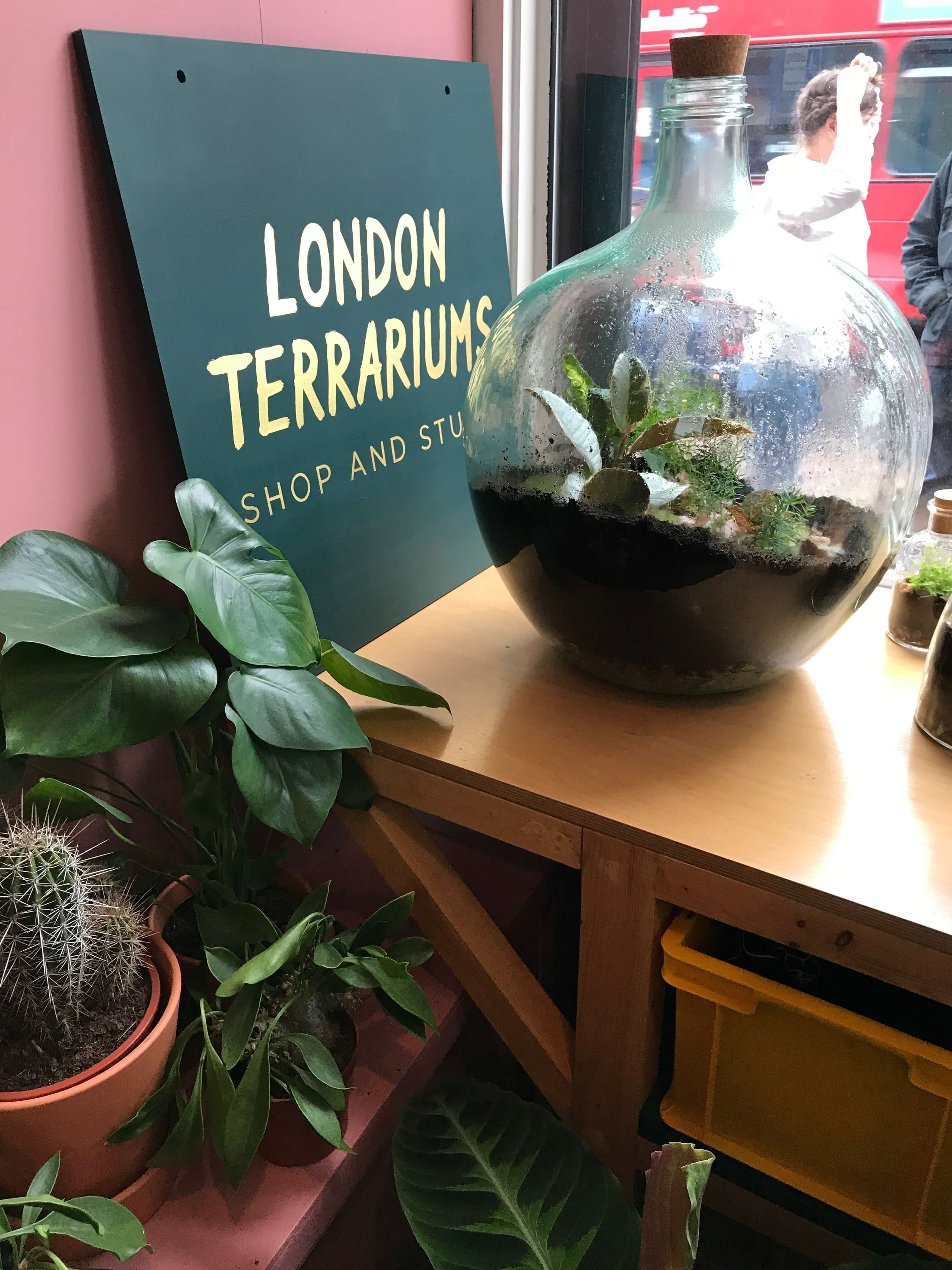 London Terrariums Emma Sibley Freedom To Exist