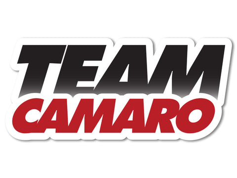 Camaros.net Decals (set of 2)