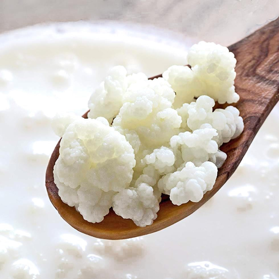 What is the optimal ratio of milk kefir grains to milk?