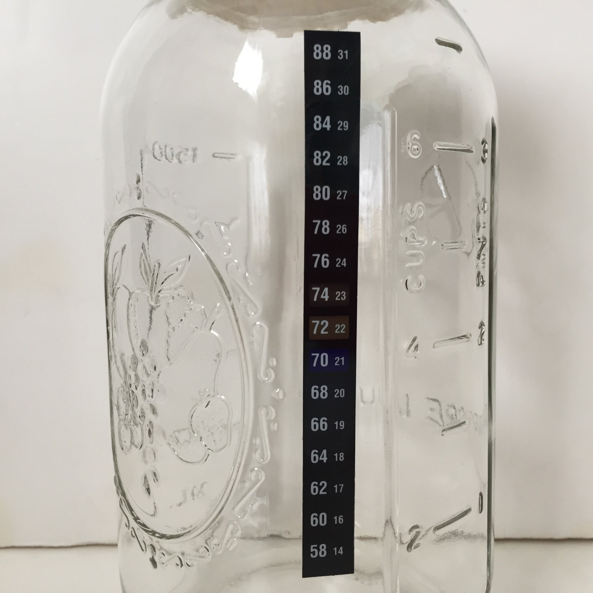 Adhesive Culturing Jar Thermometer - Yemoos Nourishing Cultures