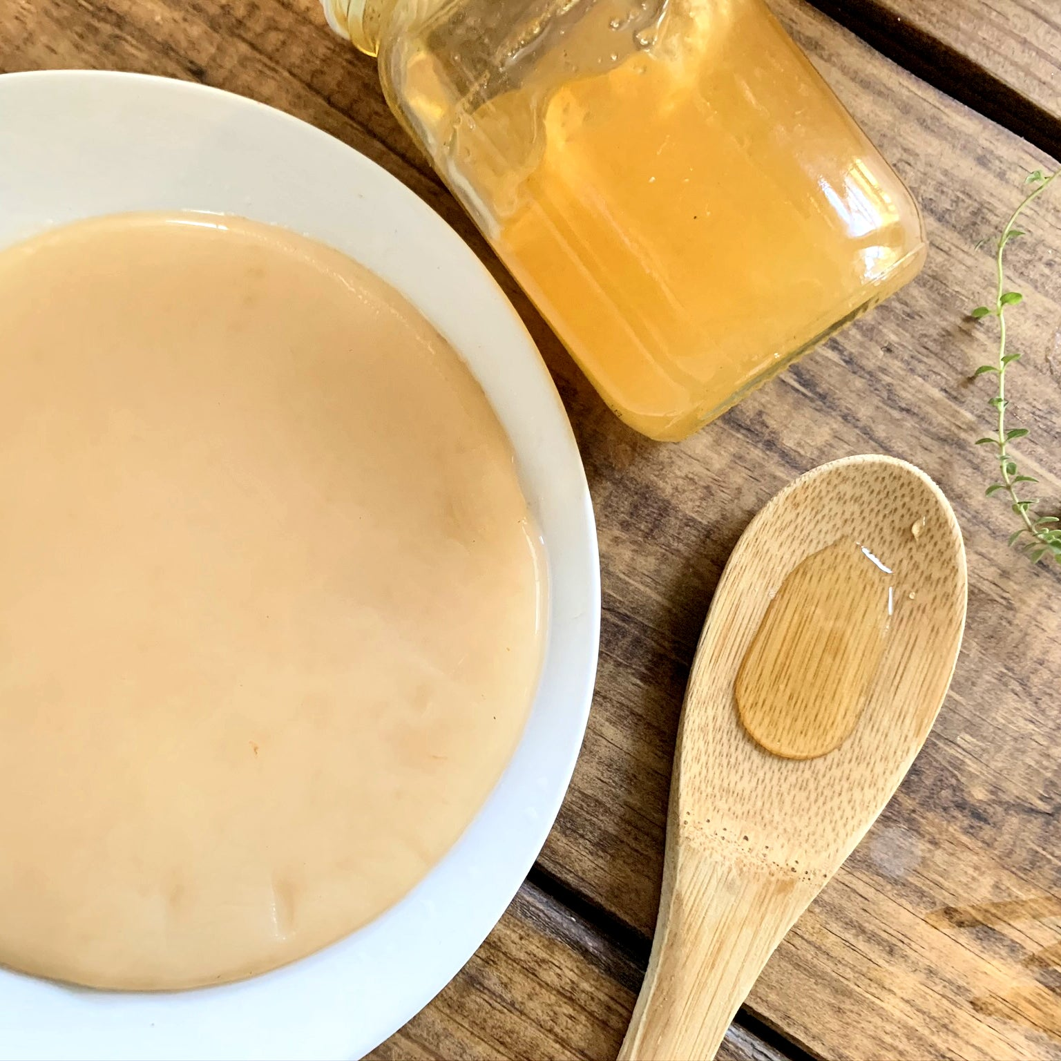 Organic Jun Scoby with Starter Tea - Yemoos Nourishing Cultures