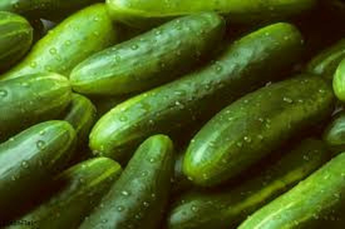 Cucumbers- sold by the bushel