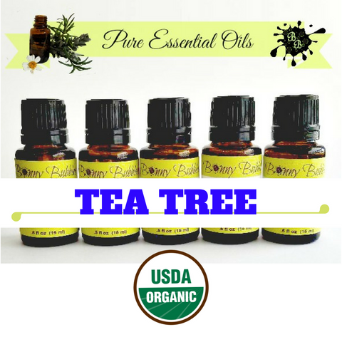 tea tree essential oil organic melaleuca