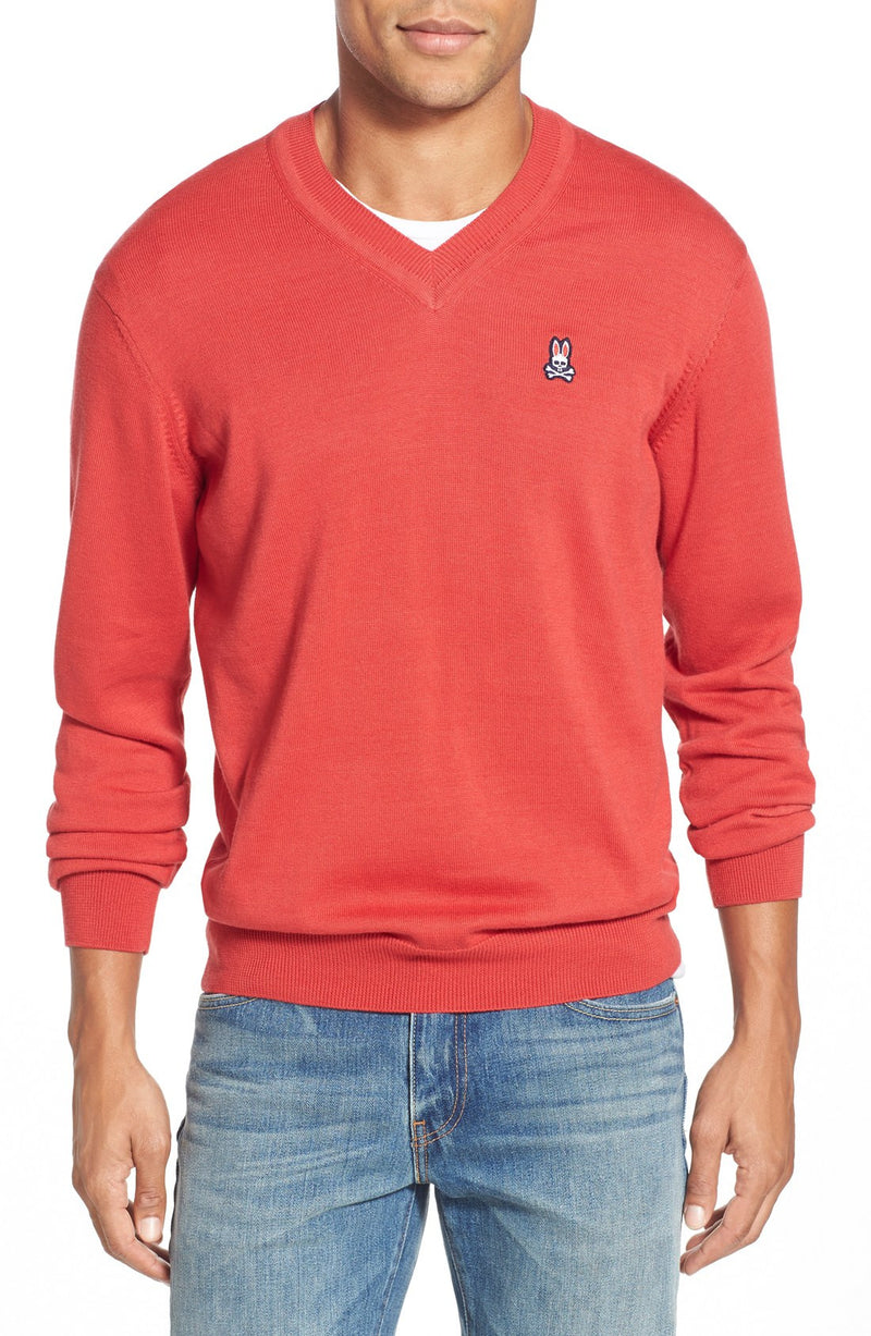 Regular Fit V-Neck Sweater
