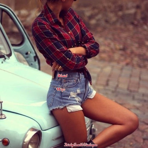 Mystery Hipster Vintage OUTFIT: High Waisted Shorts & Flannel Shirt- All Sizes