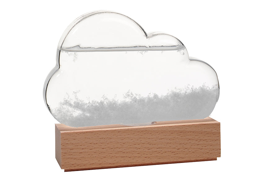 Storm Cloud Weather Predicting Station