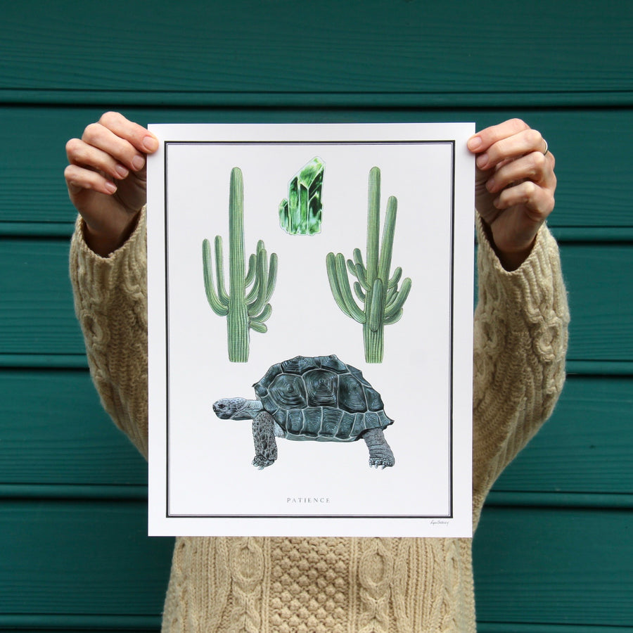 saguaro, tortoise and crystals art print