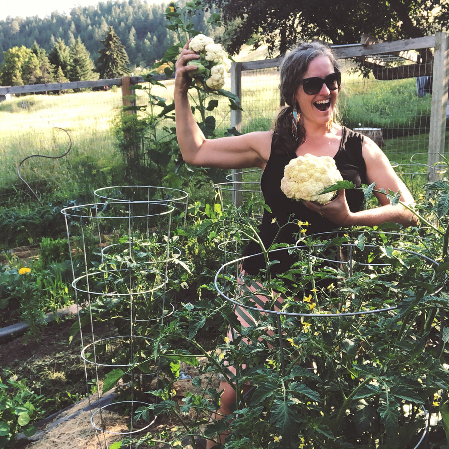 Nici Holt Cline with cauliflower in garden