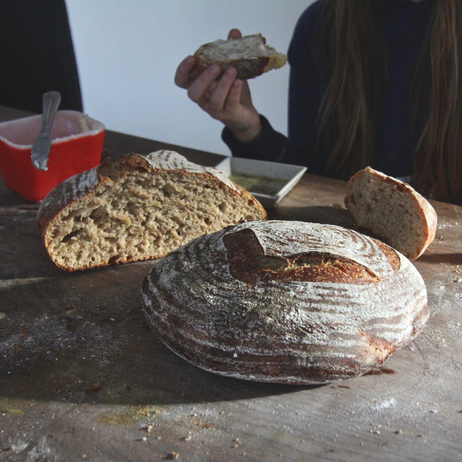 The Art & Science of Sourdough Bread / April 14, 2018 / 9a-1p