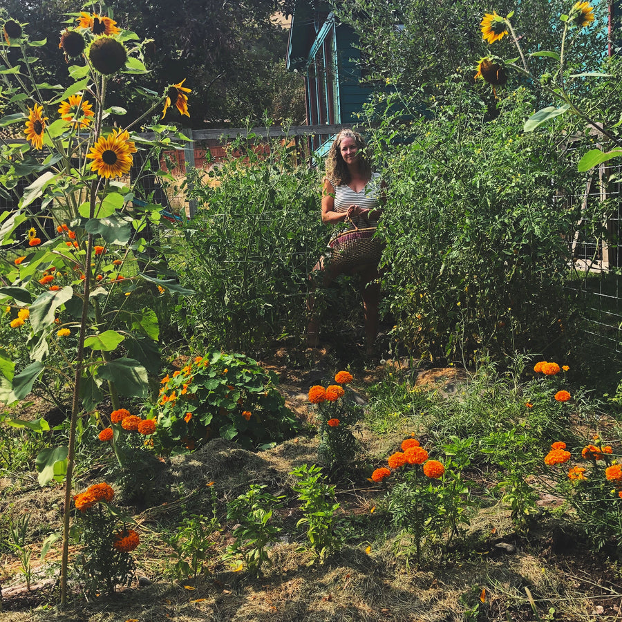 Dig This Workshop: Beginning Gardening / May 22, 2019
