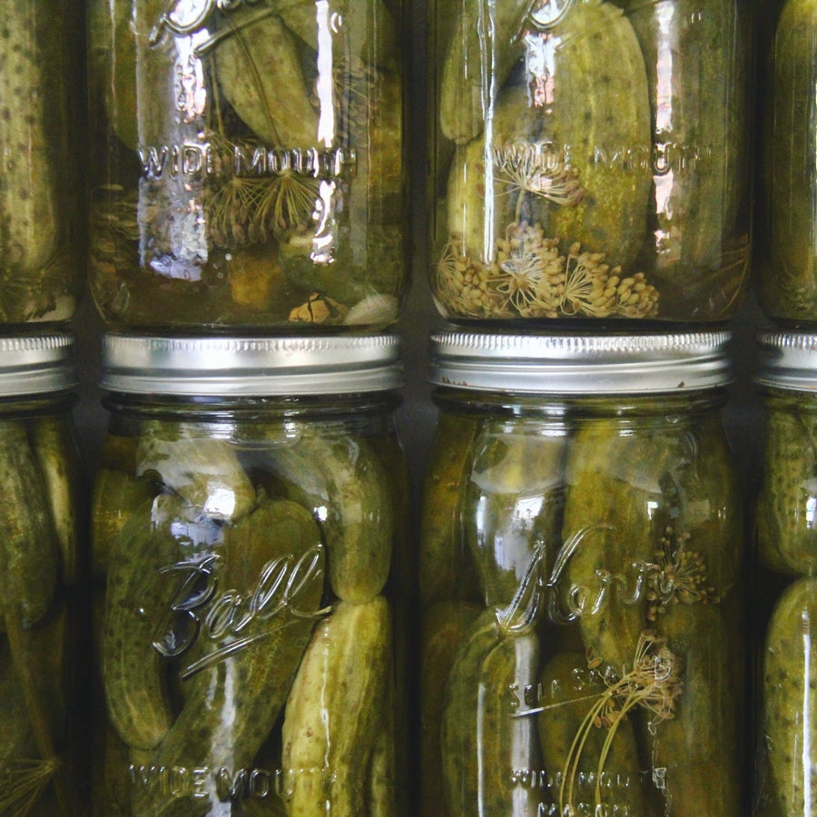 canned pickles