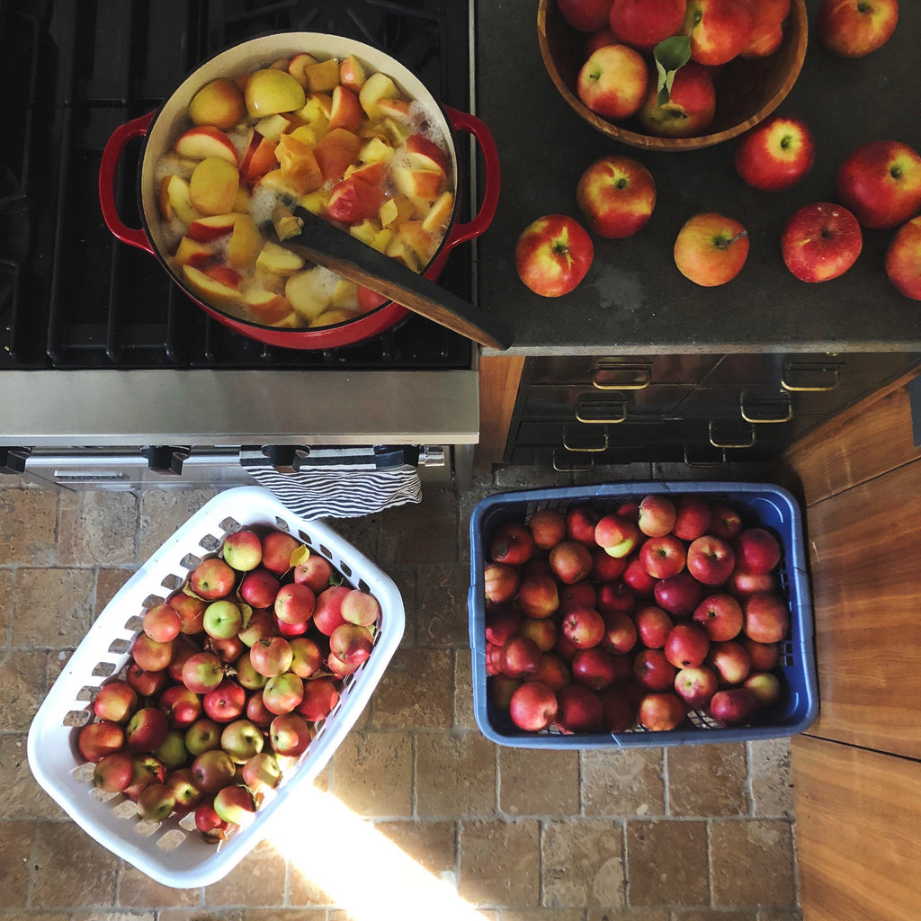 Preserving Harvest: Applesauce / an online course for beginners