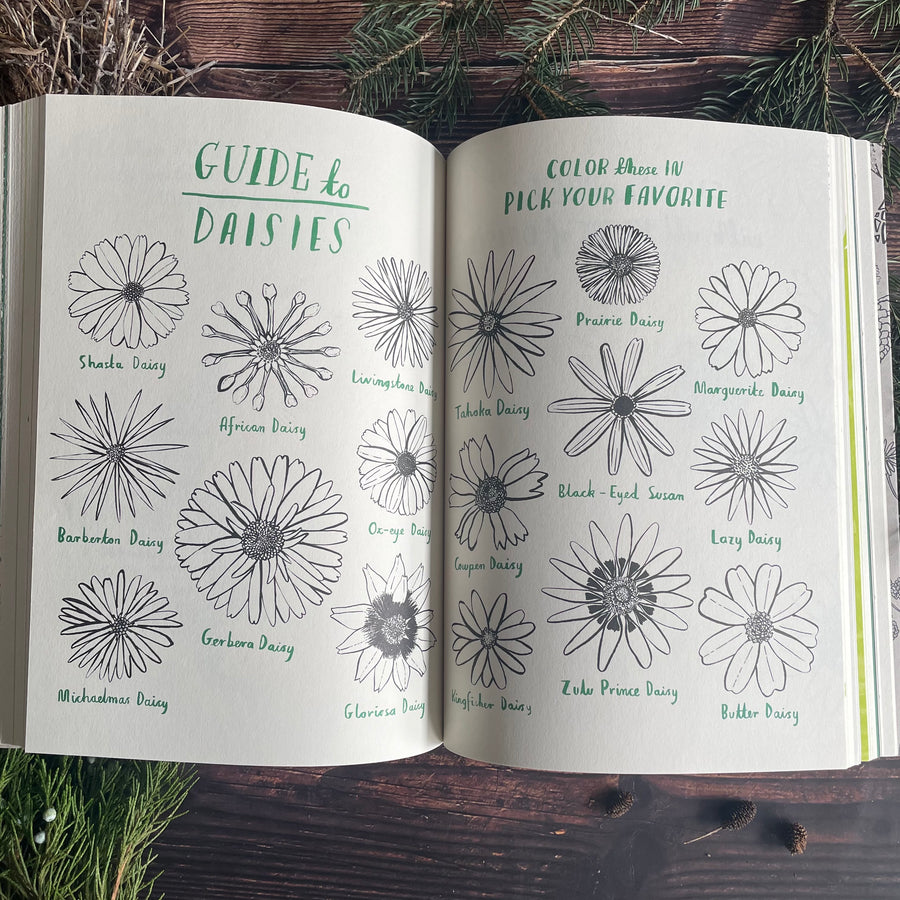 Hello Nature: Draw, Color, Make, and Grow Activity Book