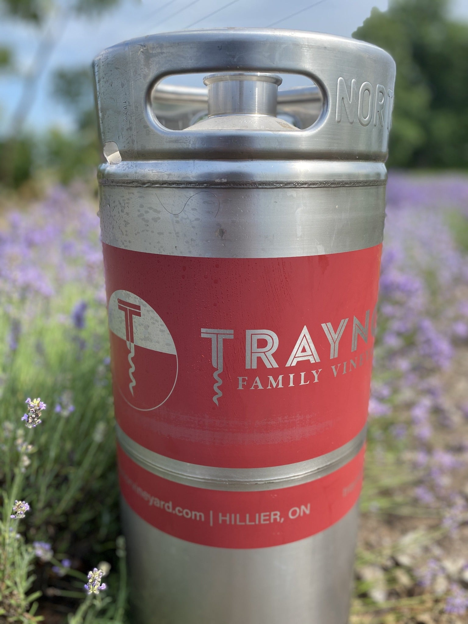 [Prince Edward County's Award Winning Wines Online]-Traynor Family Vineyard