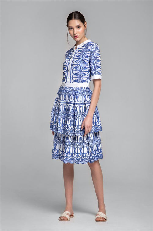 Embroidered Two-Tier Pleated Dress