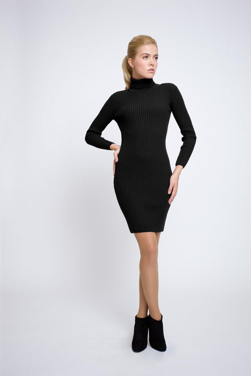 Black ribbed knit roll neck dress