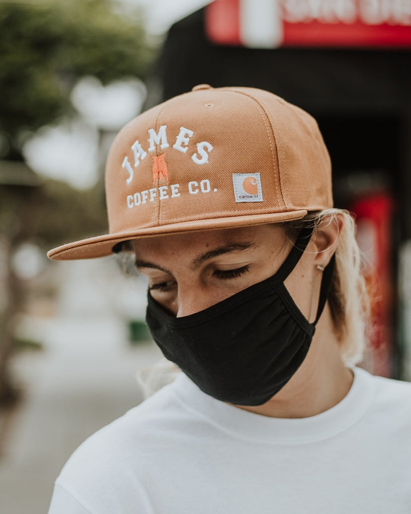 Carhartt James Coffee Snapback - Brown