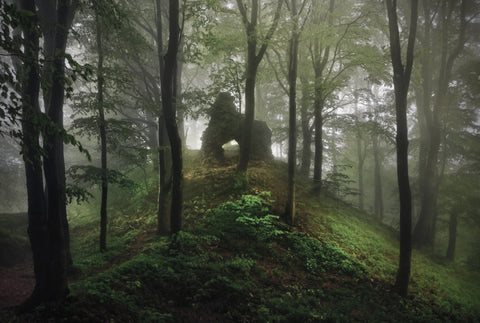 The Brothers Grimm Fairytales in Real Life: Photographer Kilian Schönberger
