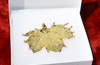 New 24K Gold Dipped Real Sugar Maple Leaf Pendant Natural Jewelry in a Gift Box