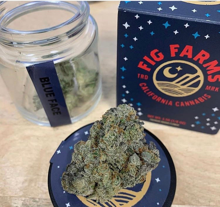 BLUE FACE FIG FARMS- 31.12% THC