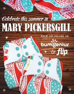 Mary Pickersgill Bumgenius Flip Limited Edition Print