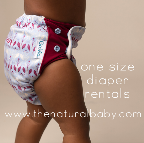 One Size Diaper Rental Packages