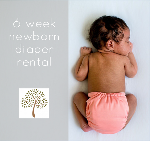 6 Week Newborn Cloth Diaper Rental