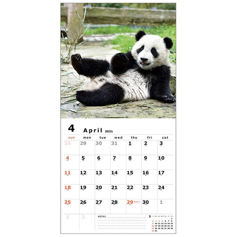 Greeting Life Wall Calendar 2021 C-1273-PA