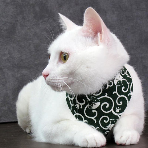 COCOLUCK  Cat Bandana CO-6197-ARABESQUE