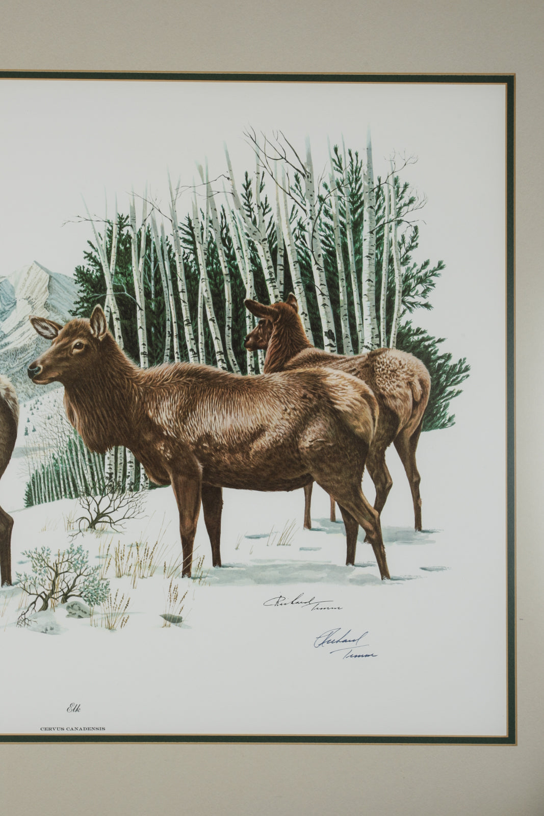 Richard Timm lithograph