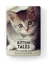 Kitten Tales by Affirmations - 24 perfect purring from our tiny friends