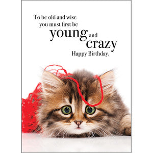 Affirmation Card - Beautiful presented card  To be olde and wise you must first be young and crazy - Happy Birthday  Inside Verse - Permission to act however you want
