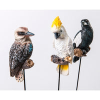 Aussie birds on a Stick - selection of Kookaburra, magpie or cockatoo