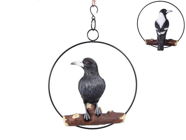 Fantastic and Realistic Magpie in ring. Can hang indoor or outdoor, and sits in a 25cm diameter ring. Great gift for the Magpie lover.